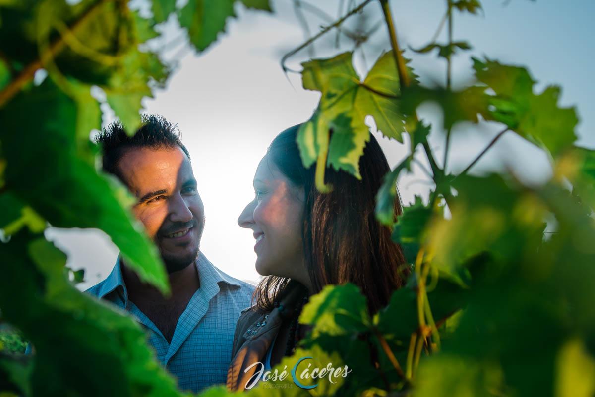 Preboda Ursula y Alberto, Viña de Spirit Sherry y viento-2